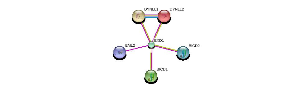 http://string-db.org/version_10/api/image/networkList?limit=0&targetmode=proteins&caller_identity=gene_cards&network_flavor=evidence&identifiers=9606.ENSP00000321029%0d%0a9606.ENSP00000242577%0d%0a9606.ENSP00000240343%0d%0a9606.ENSP00000349351%0d%0a9606.ENSP00000281474%0d%0a9606.ENSP00000442365%0d%0a
