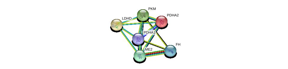 http://string-db.org/version_10/api/image/networkList?limit=0&targetmode=proteins&caller_identity=gene_cards&network_flavor=evidence&identifiers=9606.ENSP00000321070%0d%0a9606.ENSP00000369134%0d%0a9606.ENSP00000355518%0d%0a9606.ENSP00000295266%0d%0a9606.ENSP00000300051%0d%0a9606.ENSP00000320171%0d%0a