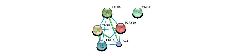 http://string-db.org/version_10/api/image/networkList?limit=0&targetmode=proteins&caller_identity=gene_cards&network_flavor=evidence&identifiers=9606.ENSP00000321106%0d%0a9606.ENSP00000171757%0d%0a9606.ENSP00000218721%0d%0a9606.ENSP00000303775%0d%0a9606.ENSP00000240874%0d%0a9606.ENSP00000248572%0d%0a