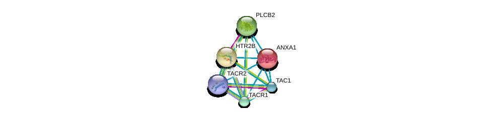 http://string-db.org/version_10/api/image/networkList?limit=0&targetmode=proteins&caller_identity=gene_cards&network_flavor=evidence&identifiers=9606.ENSP00000321106%0d%0a9606.ENSP00000303522%0d%0a9606.ENSP00000362403%0d%0a9606.ENSP00000260402%0d%0a9606.ENSP00000258400%0d%0a9606.ENSP00000257497%0d%0a