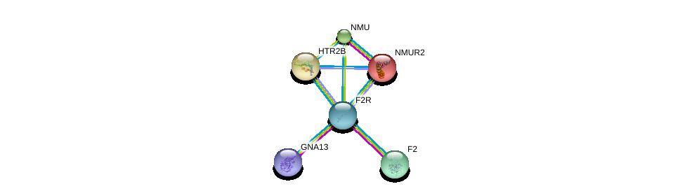 http://string-db.org/version_10/api/image/networkList?limit=0&targetmode=proteins&caller_identity=gene_cards&network_flavor=evidence&identifiers=9606.ENSP00000321326%0d%0a9606.ENSP00000308541%0d%0a9606.ENSP00000400717%0d%0a9606.ENSP00000264218%0d%0a9606.ENSP00000258400%0d%0a9606.ENSP00000255262%0d%0a