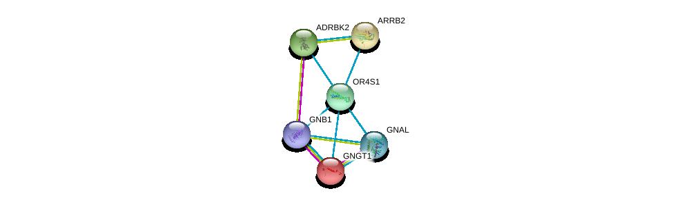 http://string-db.org/version_10/api/image/networkList?limit=0&targetmode=proteins&caller_identity=gene_cards&network_flavor=evidence&identifiers=9606.ENSP00000321447%0d%0a9606.ENSP00000334051%0d%0a9606.ENSP00000367869%0d%0a9606.ENSP00000248572%0d%0a9606.ENSP00000317578%0d%0a9606.ENSP00000269260%0d%0a