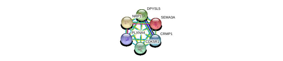 http://string-db.org/version_10/api/image/networkList?limit=0&targetmode=proteins&caller_identity=gene_cards&network_flavor=evidence&identifiers=9606.ENSP00000321606%0d%0a9606.ENSP00000265362%0d%0a9606.ENSP00000265371%0d%0a9606.ENSP00000288699%0d%0a9606.ENSP00000318486%0d%0a9606.ENSP00000323194%0d%0a