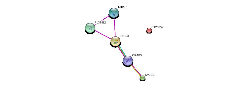 http://string-db.org/version_10/api/image/networkList?limit=0&targetmode=proteins&caller_identity=gene_cards&network_flavor=evidence&identifiers=9606.ENSP00000321703%0d%0a9606.ENSP00000432768%0d%0a9606.ENSP00000334280%0d%0a9606.ENSP00000352288%0d%0a9606.ENSP00000386394%0d%0a9606.ENSP00000229281%0d%0a