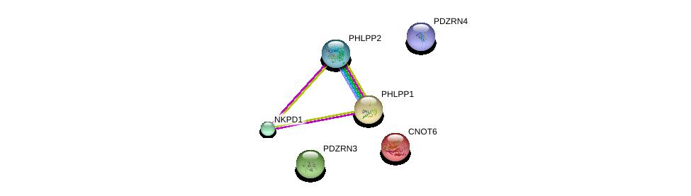 http://string-db.org/version_10/api/image/networkList?limit=0&targetmode=proteins&caller_identity=gene_cards&network_flavor=evidence&identifiers=9606.ENSP00000321976%0d%0a9606.ENSP00000384197%0d%0a9606.ENSP00000263666%0d%0a9606.ENSP00000262719%0d%0a9606.ENSP00000348611%0d%0a9606.ENSP00000261951%0d%0a