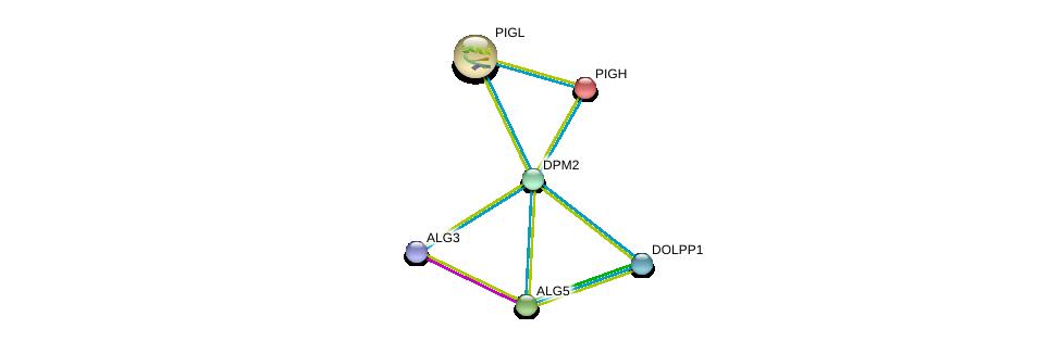 http://string-db.org/version_10/api/image/networkList?limit=0&targetmode=proteins&caller_identity=gene_cards&network_flavor=evidence&identifiers=9606.ENSP00000322181%0d%0a9606.ENSP00000361625%0d%0a9606.ENSP00000216452%0d%0a9606.ENSP00000225609%0d%0a9606.ENSP00000380793%0d%0a9606.ENSP00000239891%0d%0a