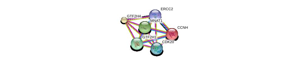 http://string-db.org/version_10/api/image/networkList?limit=0&targetmode=proteins&caller_identity=gene_cards&network_flavor=evidence&identifiers=9606.ENSP00000322343%0d%0a9606.ENSP00000256897%0d%0a9606.ENSP00000261245%0d%0a9606.ENSP00000265963%0d%0a9606.ENSP00000375809%0d%0a9606.ENSP00000259895%0d%0a