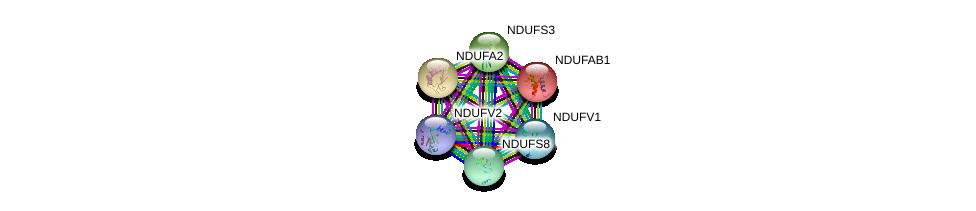 http://string-db.org/version_10/api/image/networkList?limit=0&targetmode=proteins&caller_identity=gene_cards&network_flavor=evidence&identifiers=9606.ENSP00000322450%0d%0a9606.ENSP00000252102%0d%0a9606.ENSP00000007516%0d%0a9606.ENSP00000315774%0d%0a9606.ENSP00000327268%0d%0a9606.ENSP00000263774%0d%0a
