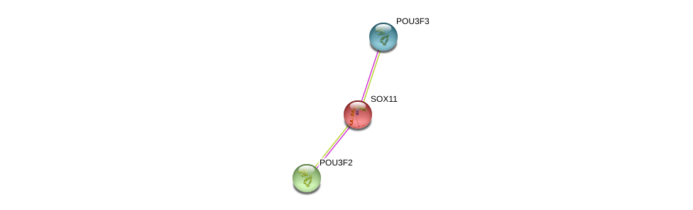 http://string-db.org/version_10/api/image/networkList?limit=0&targetmode=proteins&caller_identity=gene_cards&network_flavor=evidence&identifiers=9606.ENSP00000322568%0d%0a9606.ENSP00000355001%0d%0a9606.ENSP00000329170%0d%0a