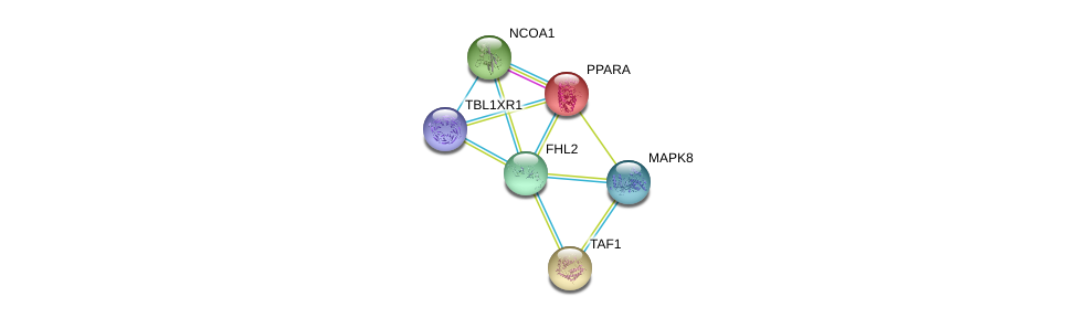 http://string-db.org/version_10/api/image/networkList?limit=0&targetmode=proteins&caller_identity=gene_cards&network_flavor=evidence&identifiers=9606.ENSP00000322909%0d%0a9606.ENSP00000262735%0d%0a9606.ENSP00000405574%0d%0a9606.ENSP00000320940%0d%0a9606.ENSP00000276072%0d%0a9606.ENSP00000353483%0d%0a