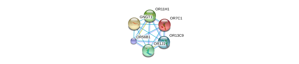 http://string-db.org/version_10/api/image/networkList?limit=0&targetmode=proteins&caller_identity=gene_cards&network_flavor=evidence&identifiers=9606.ENSP00000322939%0d%0a9606.ENSP00000248073%0d%0a9606.ENSP00000248572%0d%0a9606.ENSP00000252835%0d%0a9606.ENSP00000259357%0d%0a9606.ENSP00000259362%0d%0a