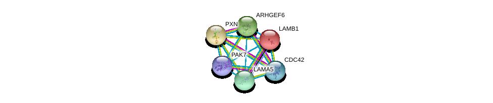http://string-db.org/version_10/api/image/networkList?limit=0&targetmode=proteins&caller_identity=gene_cards&network_flavor=evidence&identifiers=9606.ENSP00000322957%0d%0a9606.ENSP00000314458%0d%0a9606.ENSP00000222399%0d%0a9606.ENSP00000228307%0d%0a9606.ENSP00000250617%0d%0a9606.ENSP00000252999%0d%0a