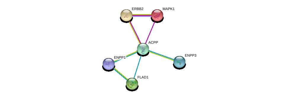 http://string-db.org/version_10/api/image/networkList?limit=0&targetmode=proteins&caller_identity=gene_cards&network_flavor=evidence&identifiers=9606.ENSP00000323036%0d%0a9606.ENSP00000269571%0d%0a9606.ENSP00000354238%0d%0a9606.ENSP00000292180%0d%0a9606.ENSP00000350265%0d%0a9606.ENSP00000215832%0d%0a