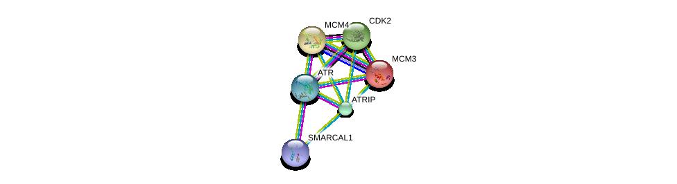 http://string-db.org/version_10/api/image/networkList?limit=0&targetmode=proteins&caller_identity=gene_cards&network_flavor=evidence&identifiers=9606.ENSP00000323099%0d%0a9606.ENSP00000343741%0d%0a9606.ENSP00000349823%0d%0a9606.ENSP00000229854%0d%0a9606.ENSP00000262105%0d%0a9606.ENSP00000266970%0d%0a