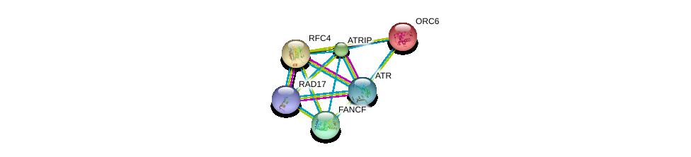 http://string-db.org/version_10/api/image/networkList?limit=0&targetmode=proteins&caller_identity=gene_cards&network_flavor=evidence&identifiers=9606.ENSP00000323099%0d%0a9606.ENSP00000343741%0d%0a9606.ENSP00000370151%0d%0a9606.ENSP00000219097%0d%0a9606.ENSP00000296273%0d%0a9606.ENSP00000330875%0d%0a