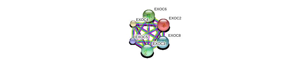 http://string-db.org/version_10/api/image/networkList?limit=0&targetmode=proteins&caller_identity=gene_cards&network_flavor=evidence&identifiers=9606.ENSP00000323377%0d%0a9606.ENSP00000353564%0d%0a9606.ENSP00000389934%0d%0a9606.ENSP00000230449%0d%0a9606.ENSP00000260762%0d%0a9606.ENSP00000253861%0d%0a