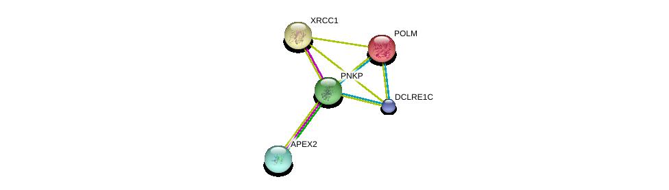 http://string-db.org/version_10/api/image/networkList?limit=0&targetmode=proteins&caller_identity=gene_cards&network_flavor=evidence&identifiers=9606.ENSP00000323511%0d%0a9606.ENSP00000262887%0d%0a9606.ENSP00000364126%0d%0a9606.ENSP00000242248%0d%0a9606.ENSP00000242248%0d%0a9606.ENSP00000367527%0d%0a