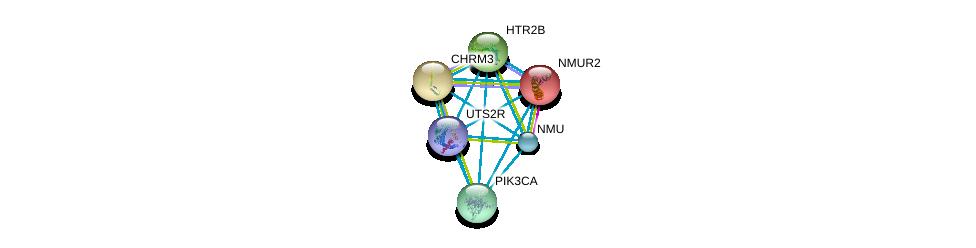 http://string-db.org/version_10/api/image/networkList?limit=0&targetmode=proteins&caller_identity=gene_cards&network_flavor=evidence&identifiers=9606.ENSP00000323516%0d%0a9606.ENSP00000255262%0d%0a9606.ENSP00000255380%0d%0a9606.ENSP00000258400%0d%0a9606.ENSP00000263967%0d%0a9606.ENSP00000264218%0d%0a
