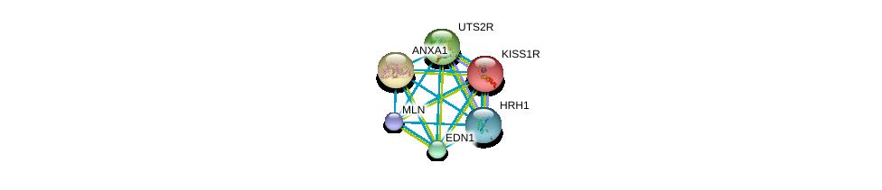 http://string-db.org/version_10/api/image/networkList?limit=0&targetmode=proteins&caller_identity=gene_cards&network_flavor=evidence&identifiers=9606.ENSP00000323516%0d%0a9606.ENSP00000257497%0d%0a9606.ENSP00000368683%0d%0a9606.ENSP00000380247%0d%0a9606.ENSP00000234371%0d%0a9606.ENSP00000388825%0d%0a