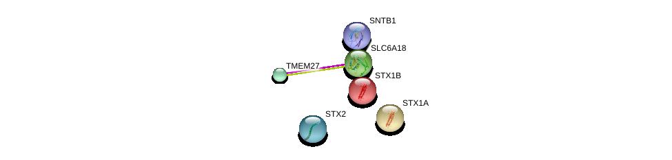 http://string-db.org/version_10/api/image/networkList?limit=0&targetmode=proteins&caller_identity=gene_cards&network_flavor=evidence&identifiers=9606.ENSP00000323549%0d%0a9606.ENSP00000378965%0d%0a9606.ENSP00000376178%0d%0a9606.ENSP00000222812%0d%0a9606.ENSP00000215095%0d%0a9606.ENSP00000369699%0d%0a