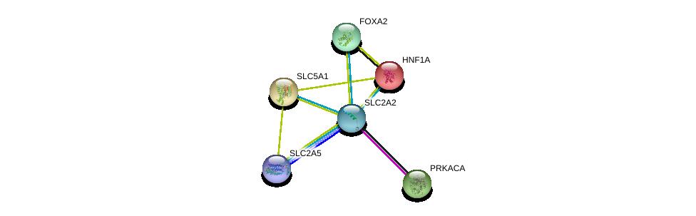 http://string-db.org/version_10/api/image/networkList?limit=0&targetmode=proteins&caller_identity=gene_cards&network_flavor=evidence&identifiers=9606.ENSP00000323568%0d%0a9606.ENSP00000257555%0d%0a9606.ENSP00000366641%0d%0a9606.ENSP00000266088%0d%0a9606.ENSP00000315955%0d%0a9606.ENSP00000309591%0d%0a