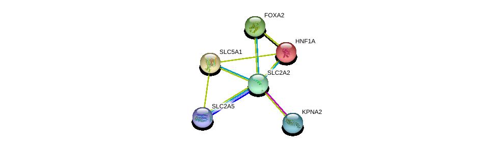 http://string-db.org/version_10/api/image/networkList?limit=0&targetmode=proteins&caller_identity=gene_cards&network_flavor=evidence&identifiers=9606.ENSP00000323568%0d%0a9606.ENSP00000266088%0d%0a9606.ENSP00000315955%0d%0a9606.ENSP00000257555%0d%0a9606.ENSP00000366641%0d%0a9606.ENSP00000332455%0d%0a