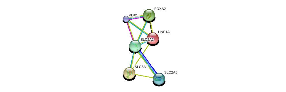 http://string-db.org/version_10/api/image/networkList?limit=0&targetmode=proteins&caller_identity=gene_cards&network_flavor=evidence&identifiers=9606.ENSP00000323568%0d%0a9606.ENSP00000366641%0d%0a9606.ENSP00000315955%0d%0a9606.ENSP00000266088%0d%0a9606.ENSP00000257555%0d%0a9606.ENSP00000370421%0d%0a