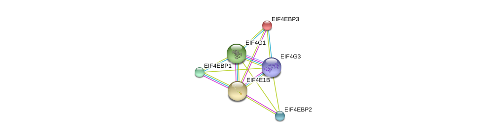 http://string-db.org/version_10/api/image/networkList?limit=0&targetmode=proteins&caller_identity=gene_cards&network_flavor=evidence&identifiers=9606.ENSP00000323714%0d%0a9606.ENSP00000340691%0d%0a9606.ENSP00000364073%0d%0a9606.ENSP00000338020%0d%0a9606.ENSP00000308472%0d%0a9606.ENSP00000362314%0d%0a