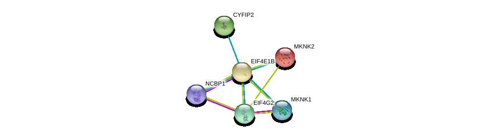 http://string-db.org/version_10/api/image/networkList?limit=0&targetmode=proteins&caller_identity=gene_cards&network_flavor=evidence&identifiers=9606.ENSP00000323714%0d%0a9606.ENSP00000364289%0d%0a9606.ENSP00000250896%0d%0a9606.ENSP00000325817%0d%0a9606.ENSP00000340281%0d%0a9606.ENSP00000361014%0d%0a