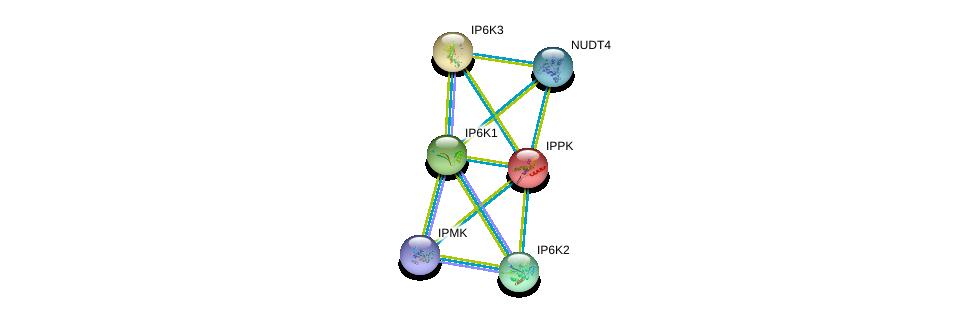 http://string-db.org/version_10/api/image/networkList?limit=0&targetmode=proteins&caller_identity=gene_cards&network_flavor=evidence&identifiers=9606.ENSP00000323780%0d%0a9606.ENSP00000287996%0d%0a9606.ENSP00000293756%0d%0a9606.ENSP00000331103%0d%0a9606.ENSP00000338352%0d%0a9606.ENSP00000363046%0d%0a
