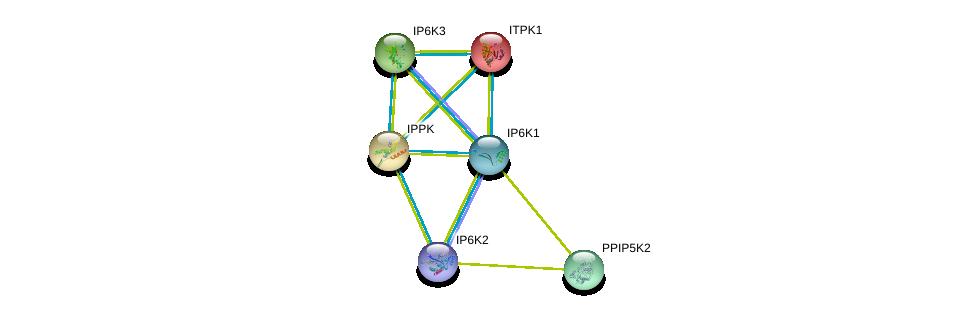 http://string-db.org/version_10/api/image/networkList?limit=0&targetmode=proteins&caller_identity=gene_cards&network_flavor=evidence&identifiers=9606.ENSP00000323780%0d%0a9606.ENSP00000293756%0d%0a9606.ENSP00000313070%0d%0a9606.ENSP00000331103%0d%0a9606.ENSP00000287996%0d%0a9606.ENSP00000267615%0d%0a