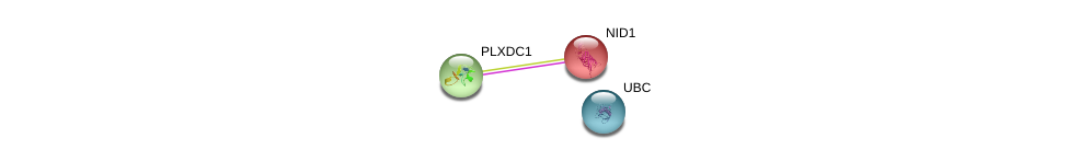 http://string-db.org/version_10/api/image/networkList?limit=0&targetmode=proteins&caller_identity=gene_cards&network_flavor=evidence&identifiers=9606.ENSP00000323927%0d%0a9606.ENSP00000264187%0d%0a9606.ENSP00000344818%0d%0a