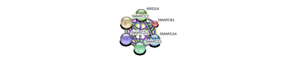 http://string-db.org/version_10/api/image/networkList?limit=0&targetmode=proteins&caller_identity=gene_cards&network_flavor=evidence&identifiers=9606.ENSP00000323967%0d%0a9606.ENSP00000378414%0d%0a9606.ENSP00000267064%0d%0a9606.ENSP00000263121%0d%0a9606.ENSP00000350720%0d%0a9606.ENSP00000320485%0d%0a