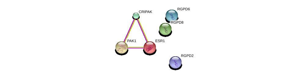 http://string-db.org/version_10/api/image/networkList?limit=0&targetmode=proteins&caller_identity=gene_cards&network_flavor=evidence&identifiers=9606.ENSP00000323978%0d%0a9606.ENSP00000206249%0d%0a9606.ENSP00000278568%0d%0a9606.ENSP00000330842%0d%0a9606.ENSP00000381214%0d%0a9606.ENSP00000306637%0d%0a