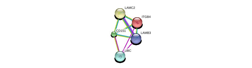 http://string-db.org/version_10/api/image/networkList?limit=0&targetmode=proteins&caller_identity=gene_cards&network_flavor=evidence&identifiers=9606.ENSP00000324101%0d%0a9606.ENSP00000344818%0d%0a9606.ENSP00000348384%0d%0a9606.ENSP00000348384%0d%0a9606.ENSP00000200181%0d%0a9606.ENSP00000264144%0d%0a