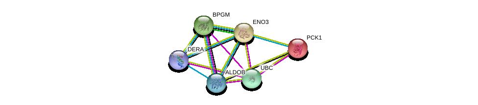http://string-db.org/version_10/api/image/networkList?limit=0&targetmode=proteins&caller_identity=gene_cards&network_flavor=evidence&identifiers=9606.ENSP00000324105%0d%0a9606.ENSP00000319814%0d%0a9606.ENSP00000342032%0d%0a9606.ENSP00000344818%0d%0a9606.ENSP00000363988%0d%0a9606.ENSP00000416583%0d%0a