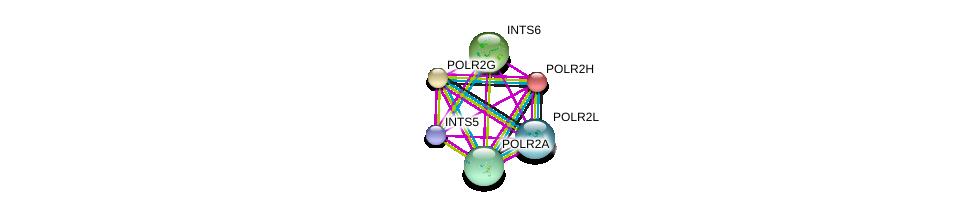 http://string-db.org/version_10/api/image/networkList?limit=0&targetmode=proteins&caller_identity=gene_cards&network_flavor=evidence&identifiers=9606.ENSP00000324124%0d%0a9606.ENSP00000296223%0d%0a9606.ENSP00000301788%0d%0a9606.ENSP00000314949%0d%0a9606.ENSP00000310260%0d%0a9606.ENSP00000327889%0d%0a