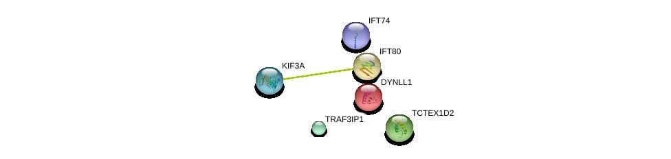 http://string-db.org/version_10/api/image/networkList?limit=0&targetmode=proteins&caller_identity=gene_cards&network_flavor=evidence&identifiers=9606.ENSP00000324323%0d%0a9606.ENSP00000368020%0d%0a9606.ENSP00000242577%0d%0a9606.ENSP00000312778%0d%0a9606.ENSP00000369402%0d%0a9606.ENSP00000362424%0d%0a