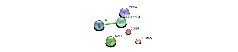http://string-db.org/version_10/api/image/networkList?limit=0&targetmode=proteins&caller_identity=gene_cards&network_flavor=evidence&identifiers=9606.ENSP00000324628%0d%0a9606.ENSP00000357048%0d%0a9606.ENSP00000317790%0d%0a9606.ENSP00000356771%0d%0a9606.ENSP00000348068%0d%0a9606.ENSP00000297135%0d%0a