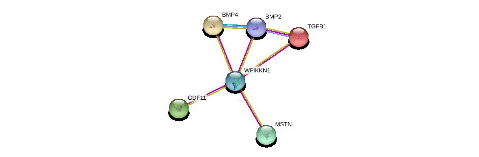 http://string-db.org/version_10/api/image/networkList?limit=0&targetmode=proteins&caller_identity=gene_cards&network_flavor=evidence&identifiers=9606.ENSP00000324763%0d%0a9606.ENSP00000257868%0d%0a9606.ENSP00000260950%0d%0a9606.ENSP00000221930%0d%0a9606.ENSP00000368104%0d%0a9606.ENSP00000245451%0d%0a
