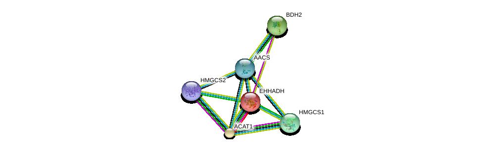 http://string-db.org/version_10/api/image/networkList?limit=0&targetmode=proteins&caller_identity=gene_cards&network_flavor=evidence&identifiers=9606.ENSP00000324842%0d%0a9606.ENSP00000265838%0d%0a9606.ENSP00000231887%0d%0a9606.ENSP00000296424%0d%0a9606.ENSP00000358414%0d%0a9606.ENSP00000322706%0d%0a