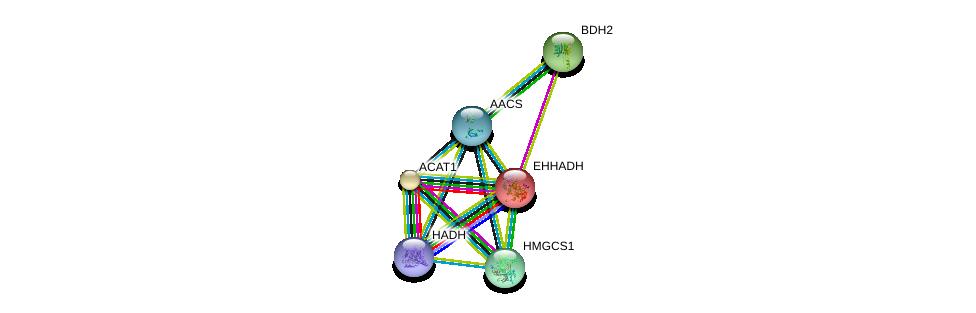 http://string-db.org/version_10/api/image/networkList?limit=0&targetmode=proteins&caller_identity=gene_cards&network_flavor=evidence&identifiers=9606.ENSP00000324842%0d%0a9606.ENSP00000296424%0d%0a9606.ENSP00000265838%0d%0a9606.ENSP00000231887%0d%0a9606.ENSP00000385638%0d%0a9606.ENSP00000322706%0d%0a