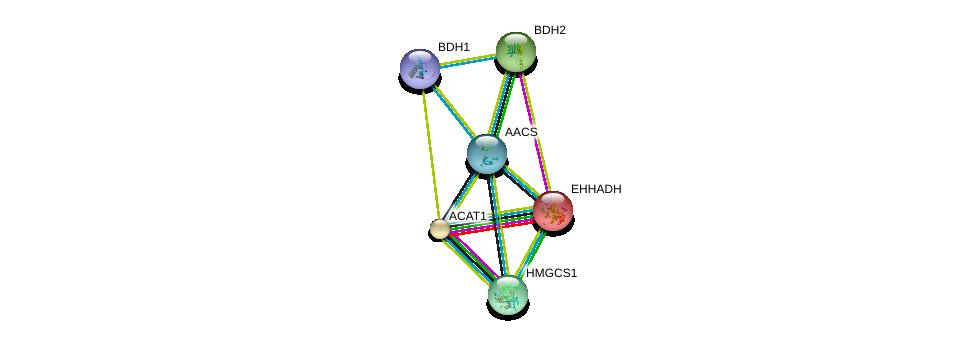 http://string-db.org/version_10/api/image/networkList?limit=0&targetmode=proteins&caller_identity=gene_cards&network_flavor=evidence&identifiers=9606.ENSP00000324842%0d%0a9606.ENSP00000350914%0d%0a9606.ENSP00000231887%0d%0a9606.ENSP00000265838%0d%0a9606.ENSP00000296424%0d%0a9606.ENSP00000322706%0d%0a