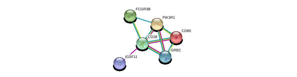 http://string-db.org/version_10/api/image/networkList?limit=0&targetmode=proteins&caller_identity=gene_cards&network_flavor=evidence&identifiers=9606.ENSP00000324890%0d%0a9606.ENSP00000274335%0d%0a9606.ENSP00000264246%0d%0a9606.ENSP00000377370%0d%0a9606.ENSP00000339007%0d%0a9606.ENSP00000294800%0d%0a