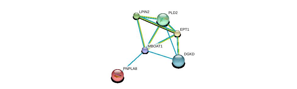 http://string-db.org/version_10/api/image/networkList?limit=0&targetmode=proteins&caller_identity=gene_cards&network_flavor=evidence&identifiers=9606.ENSP00000324944%0d%0a9606.ENSP00000257694%0d%0a9606.ENSP00000260585%0d%0a9606.ENSP00000261596%0d%0a9606.ENSP00000263088%0d%0a9606.ENSP00000264057%0d%0a