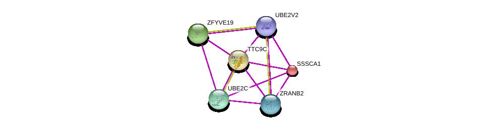 http://string-db.org/version_10/api/image/networkList?limit=0&targetmode=proteins&caller_identity=gene_cards&network_flavor=evidence&identifiers=9606.ENSP00000325266%0d%0a9606.ENSP00000348838%0d%0a9606.ENSP00000347498%0d%0a9606.ENSP00000428209%0d%0a9606.ENSP00000359958%0d%0a9606.ENSP00000312318%0d%0a