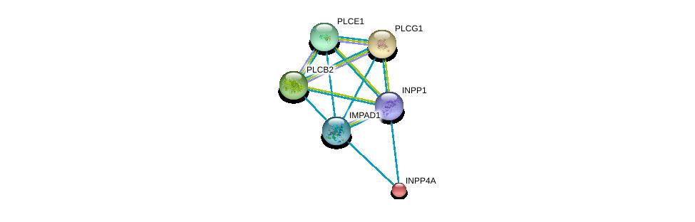http://string-db.org/version_10/api/image/networkList?limit=0&targetmode=proteins&caller_identity=gene_cards&network_flavor=evidence&identifiers=9606.ENSP00000325423%0d%0a9606.ENSP00000074304%0d%0a9606.ENSP00000244007%0d%0a9606.ENSP00000260402%0d%0a9606.ENSP00000260766%0d%0a9606.ENSP00000262644%0d%0a