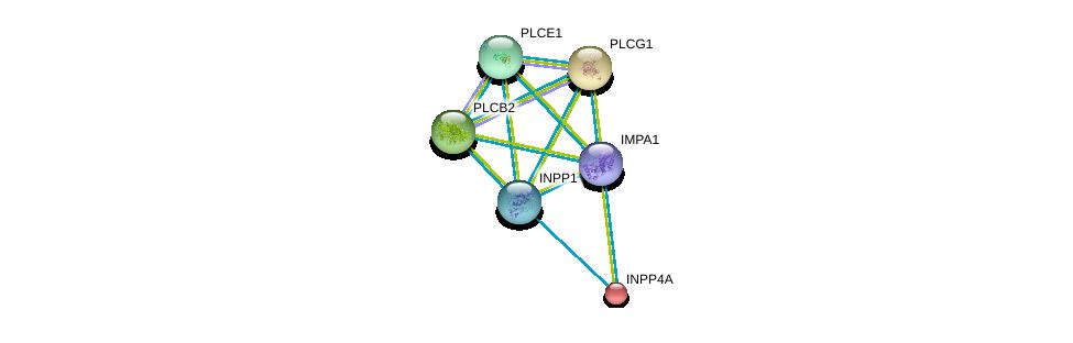 http://string-db.org/version_10/api/image/networkList?limit=0&targetmode=proteins&caller_identity=gene_cards&network_flavor=evidence&identifiers=9606.ENSP00000325423%0d%0a9606.ENSP00000408526%0d%0a9606.ENSP00000074304%0d%0a9606.ENSP00000244007%0d%0a9606.ENSP00000260402%0d%0a9606.ENSP00000260766%0d%0a