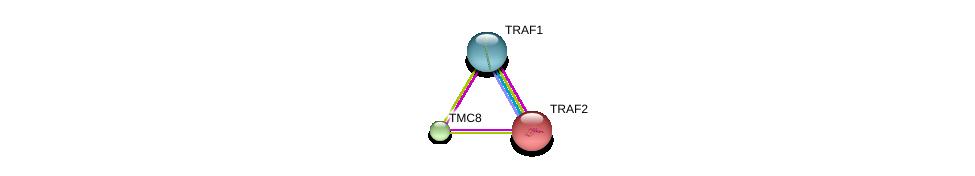 http://string-db.org/version_10/api/image/networkList?limit=0&targetmode=proteins&caller_identity=gene_cards&network_flavor=evidence&identifiers=9606.ENSP00000325561%0d%0a9606.ENSP00000247668%0d%0a9606.ENSP00000362994%0d%0a