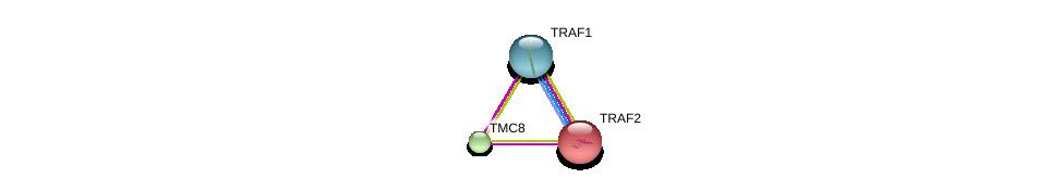http://string-db.org/version_10/api/image/networkList?limit=0&targetmode=proteins&caller_identity=gene_cards&network_flavor=evidence&identifiers=9606.ENSP00000325561%0d%0a9606.ENSP00000362994%0d%0a9606.ENSP00000247668%0d%0a